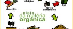 Ciclo da Matéria Orgânica